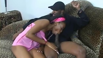 Completely love Your desired Ebony Shrub