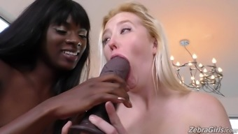 Adorable lesbian girls within the toying and coochie thrashing performance