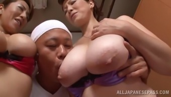 Excellent Oriental pornstars along with big tits get slammed within a ffm threesome performance