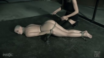 Unadorned tramp Abigail Dupree encounters herself within the clutches of the mistress