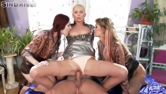 glam females kate high, vanessa misery and adel sunshine gets exploded