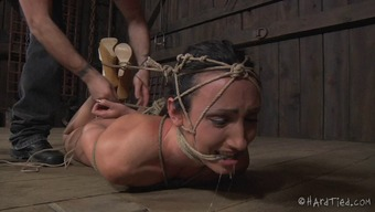 Say as thrall babe pussy is taunted applying belongings in BDSM